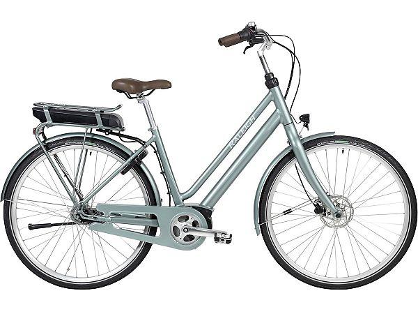 Raleigh Sussex E2 Bosch Green - Elcykel - 2020