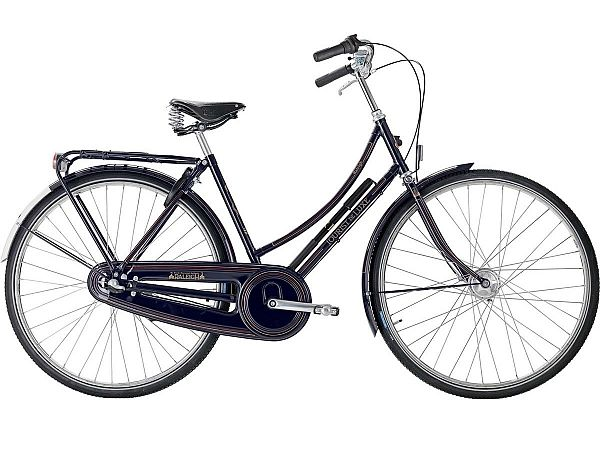 Raleigh Tourist de Luxe 3 Blue - Damecykel - 2021