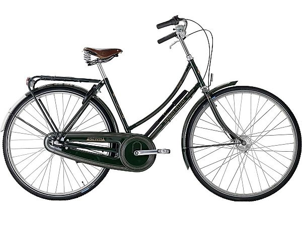 Raleigh Tourist de Luxe 7 Green - Damecykel - 2021